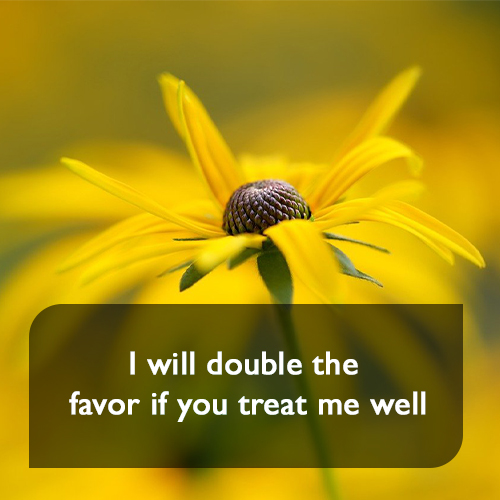 I will double the favor if you treat me well